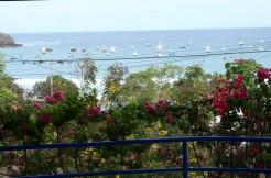 Center of Bay Views
