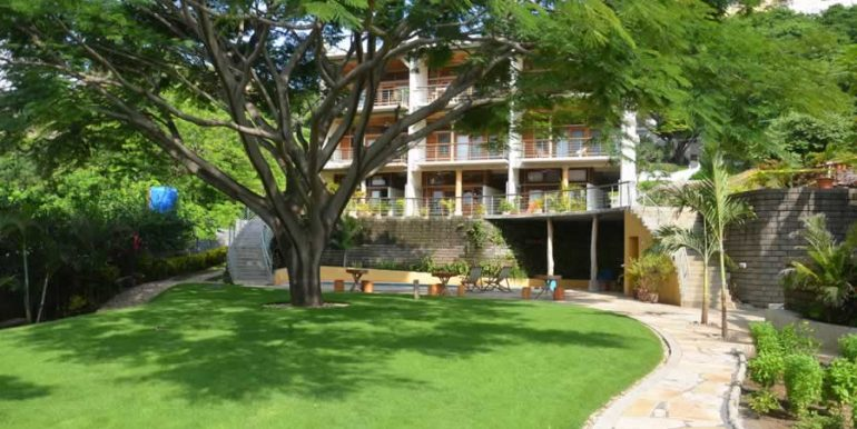 talanguera_townhomes_lawn_tree_building_north
